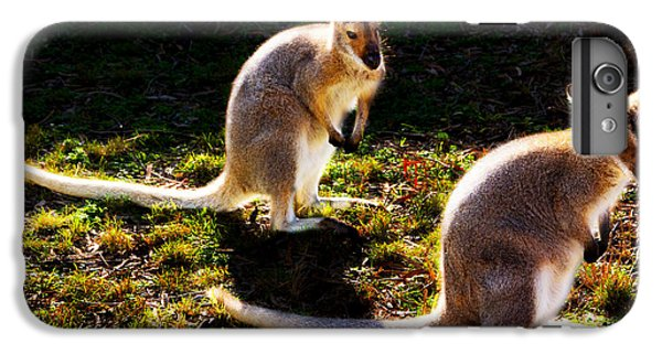 Red-necked Wallabies IPhone 6s Plus Case