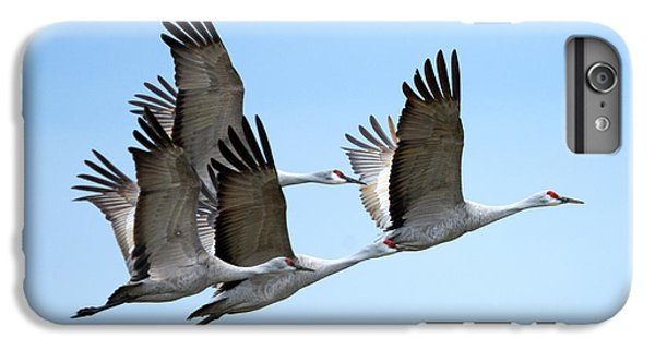 Synchronized IPhone 6s Plus Case by Mike Dawson