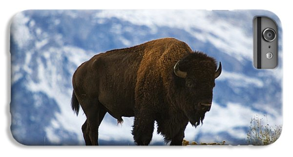 Teton Bison IPhone 6s Plus Case