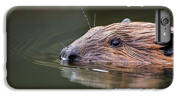 The Beaver IPhone 6s Plus Case