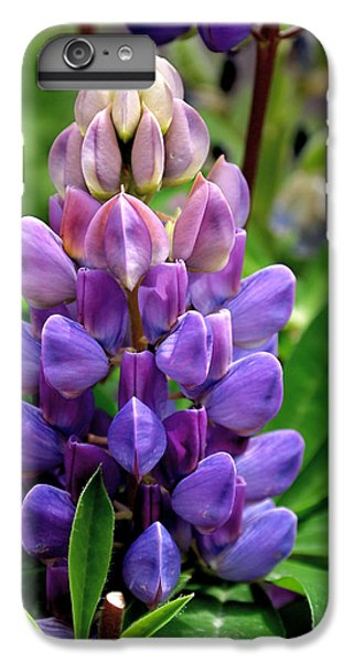 The Colors Of Lupine IPhone 6s Plus Case
