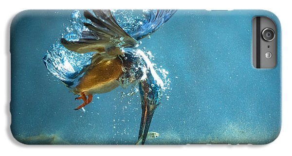The Kingfisher IPhone 6s Plus Case
