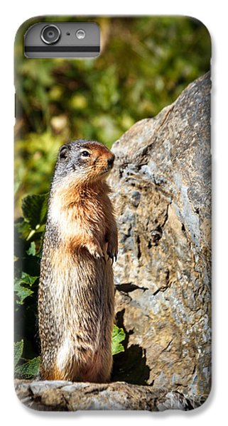 The Marmot IPhone 6s Plus Case by Robert Bales