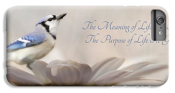 Bluejay iPhone 6s Plus Case - The Meaning Of Life by Lori Deiter