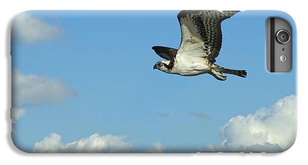 The Osprey 2 IPhone 6s Plus Case by Ernie Echols