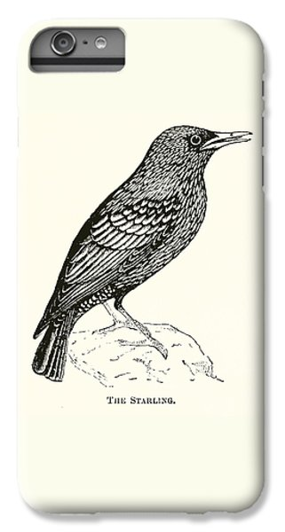 Starlings iPhone 6s Plus Case - The Starling by English School