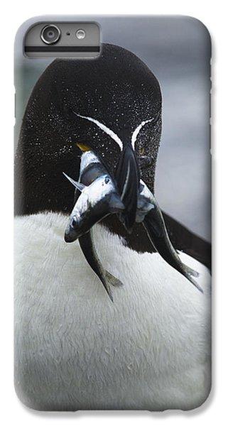 Feeding Time... IPhone 6s Plus Case by Nina Stavlund