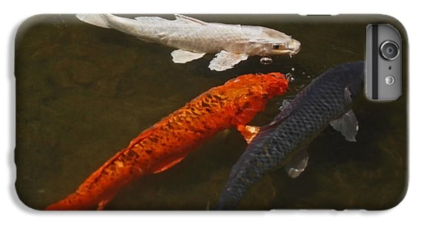 Tri-colored Koi IPhone 6s Plus Case