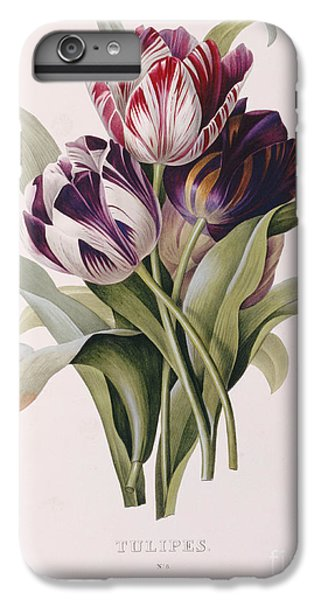 Tulips IPhone 6s Plus Case by Pierre Joseph Redoute