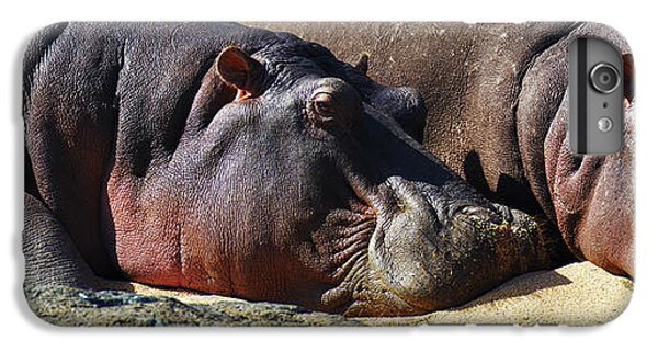 Two Hippos Sleeping On Riverbank IPhone 6s Plus Case by Johan Swanepoel