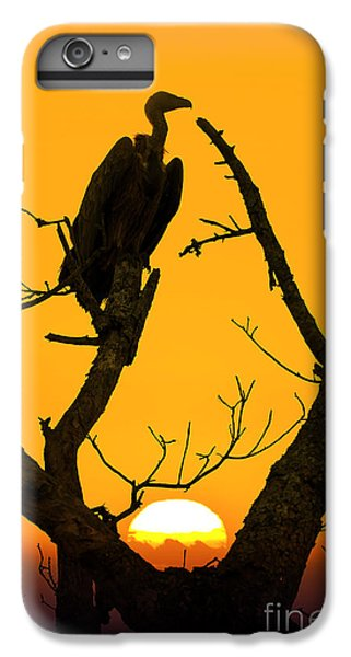 Vulture iPhone 6s Plus Case - Vulture by Delphimages Photo Creations