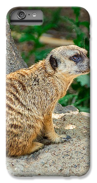 Watchful Meerkat Vertical IPhone 6s Plus Case by Jon Woodhams