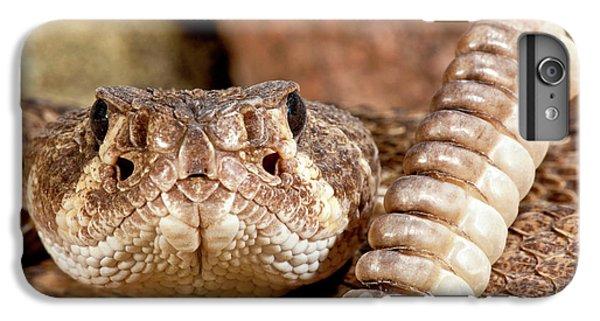 Diamondback iPhone 6s Plus Case - Western Diamondback Rattlesnake by David Northcott