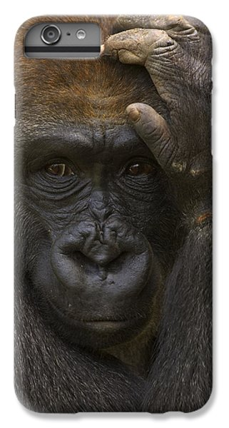 Western Lowland Gorilla With Hand IPhone 6s Plus Case by San Diego Zoo