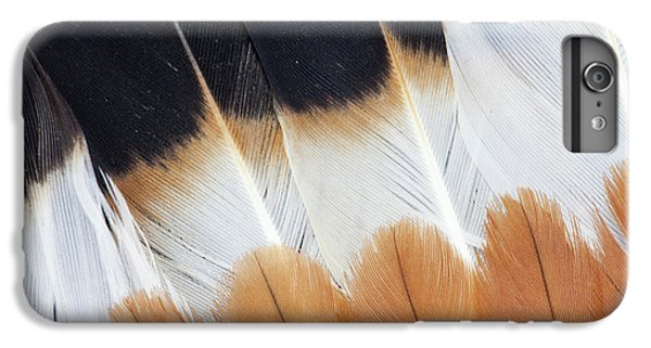 Lapwing iPhone 6s Plus Case - Wing Fanned Out On Northern Lapwing by Darrell Gulin