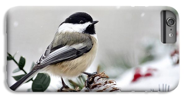 Winter Chickadee IPhone 6s Plus Case