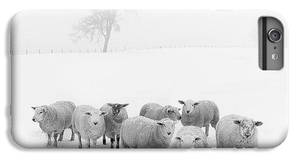 Winter Woollies IPhone 6s Plus Case by Janet Burdon