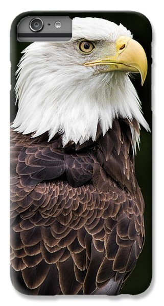 With Dignity IPhone 6s Plus Case by Dale Kincaid