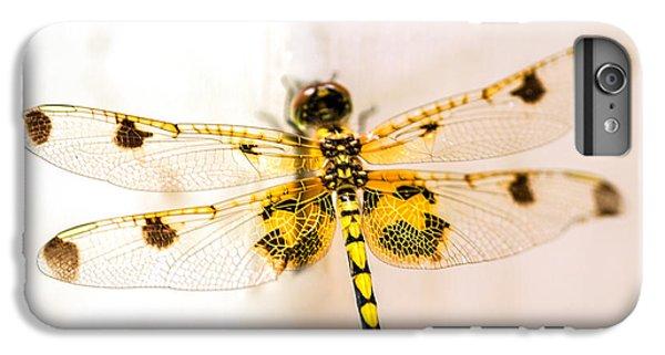 Yellow Dragonfly Pantala Flavescens IPhone 6s Plus Case by Iris Richardson