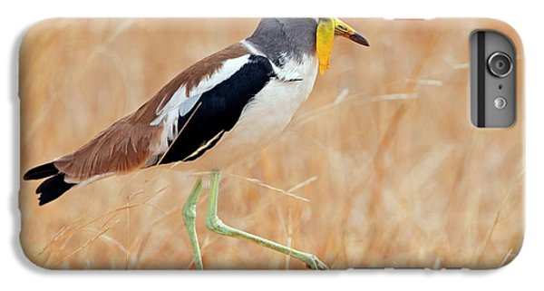 Lapwing iPhone 6s Plus Case - Yellow-wattled Lapwing by Bildagentur-online/mcphoto-schaef