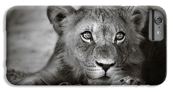 Lion iPhone 6s Plus Case - Young Lion Portrait by Johan Swanepoel
