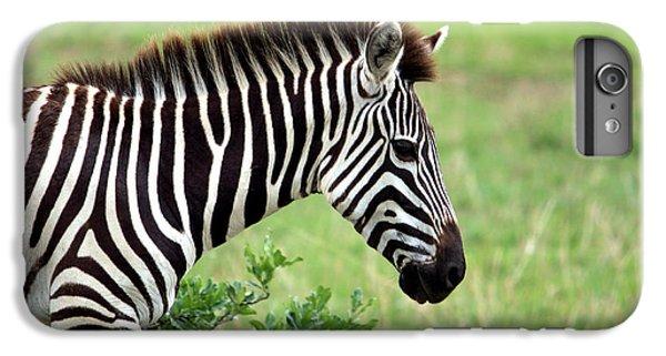 Zebra IPhone 6s Plus Case by Aidan Moran