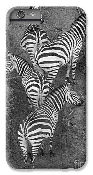 Zebra Design IPhone 6s Plus Case by Carol Walker