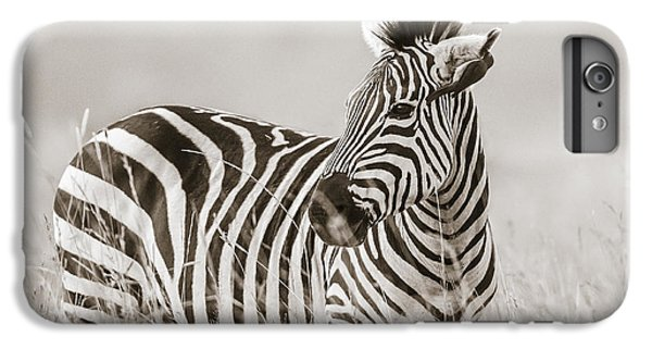 Zebra iPhone 6s Plus Case - Zebra Masai Mara Kenya by Regina Mueller