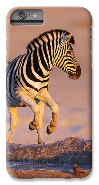 Zebra iPhone 6s Plus Case - Zebras Jump From Waterhole by Johan Swanepoel