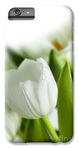 Tulip iPhone 6s Plus Case - White Tulips by Nailia Schwarz