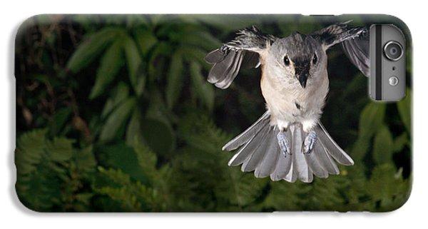 Tufted Titmouse In Flight IPhone 6s Plus Case