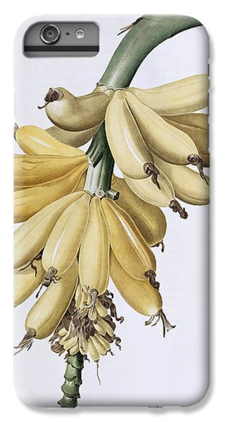 Banana IPhone 6s Plus Case
