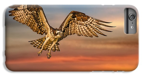 Calling It A Day IPhone 6s Plus Case by Susan Candelario