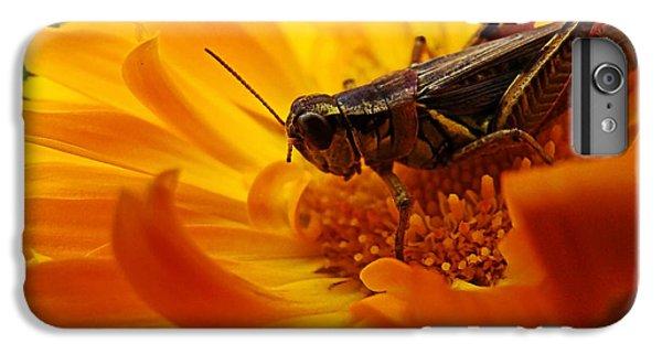 Grasshopper iPhone 6s Plus Case - Grasshopper Luncheon by Lianne Schneider