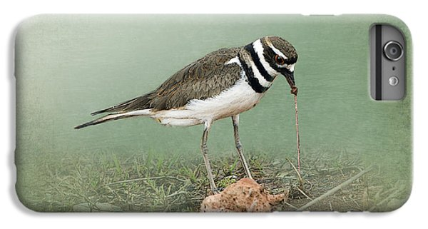 Killdeer And Worm IPhone 6s Plus Case