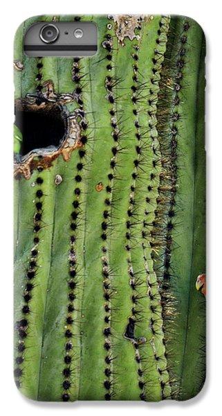 Lovebirds And The Saguaro  IPhone 6s Plus Case by Saija  Lehtonen