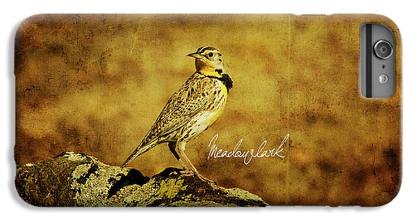 Meadowlark IPhone 6s Plus Case by Lana Trussell