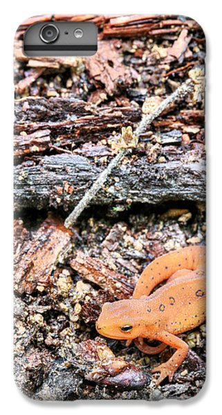 Newting To See Here IPhone 6s Plus Case by JC Findley