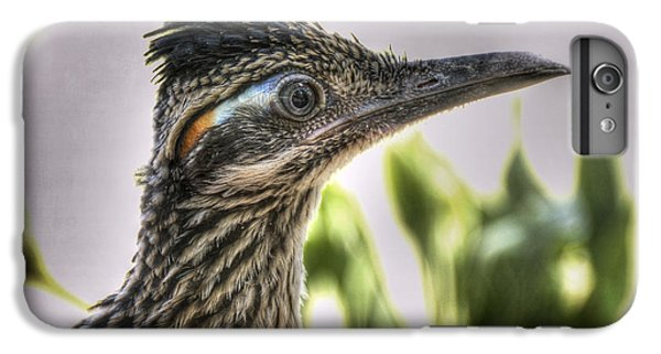 Roadrunner Portrait  IPhone 6s Plus Case by Saija  Lehtonen