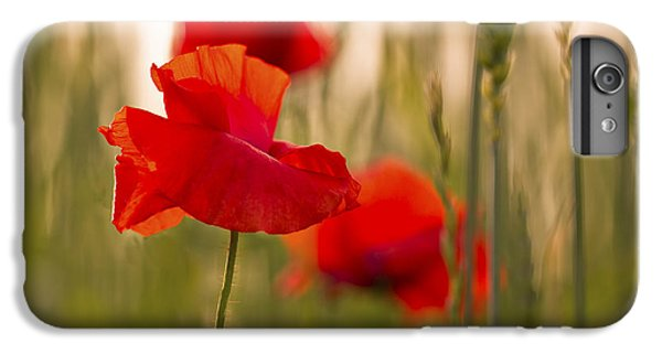 IPhone 6s Plus Case featuring the photograph Sunset Poppies. by Clare Bambers