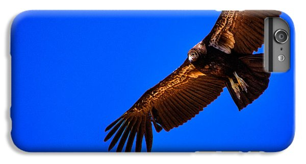 The California Condor IPhone 6s Plus Case by David Patterson