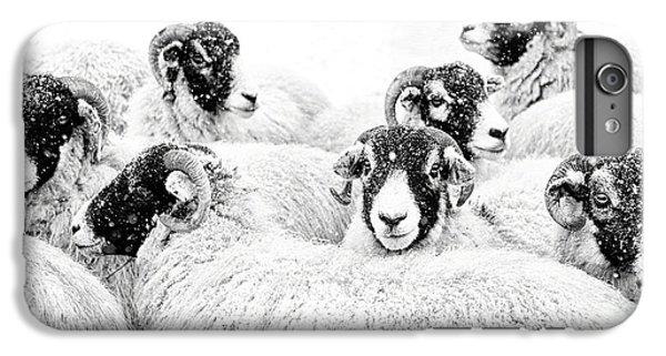 Sheep iPhone 6s Plus Case -  In Winters Grip by Janet Burdon