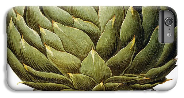 Artichoke, 1613 IPhone 6s Plus Case