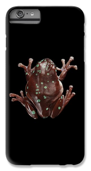 Australian Green Tree Frog, Or Litoria Caerulea Isolated Black Background IPhone 6s Plus Case