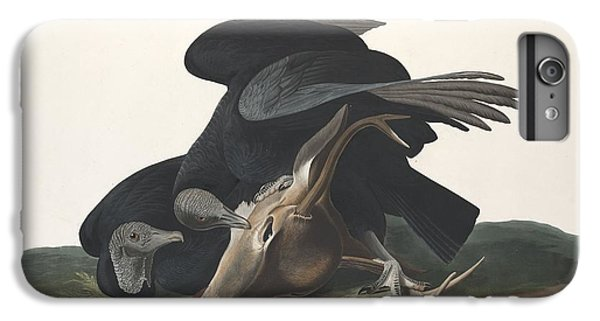 Black Vulture IPhone 6s Plus Case by Rob Dreyer