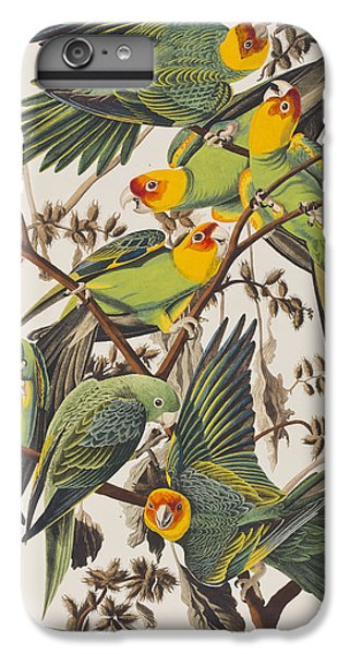 Carolina Parrot IPhone 6s Plus Case by John James Audubon
