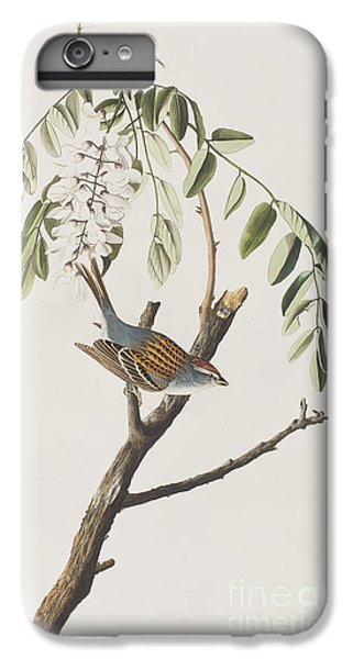 Chipping Sparrow IPhone 6s Plus Case by John James Audubon