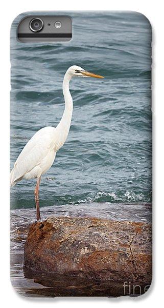 Great White Heron IPhone 6s Plus Case by Elena Elisseeva