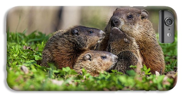 Happy Family IPhone 6s Plus Case by Mircea Costina Photography