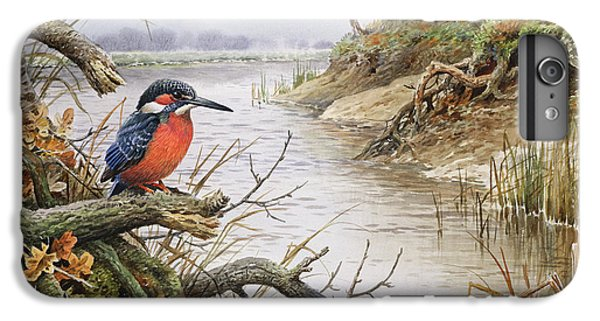 Kingfisher iPhone 6s Plus Case - Kingfisher by Carl Donner